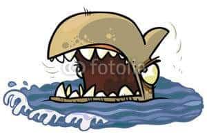 Cartoon Shark head.