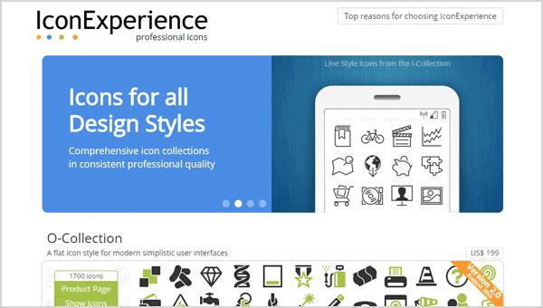 IconExperience
